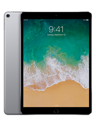 Picture of Apple iPad Pro 10.5 Wi-Fi 256GB Space Grey (MPDY2B)