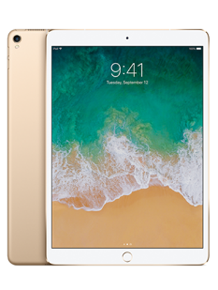 Picture of Apple iPad Pro 10.5 Wi-Fi Cellular 64GB Gold (MQF12B)