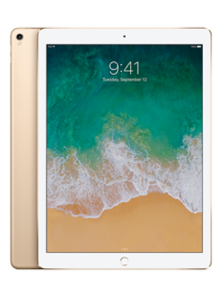 Picture of Apple iPad Pro 12.9 Wi-Fi   Cellular 256GB Gold (MPA62B)